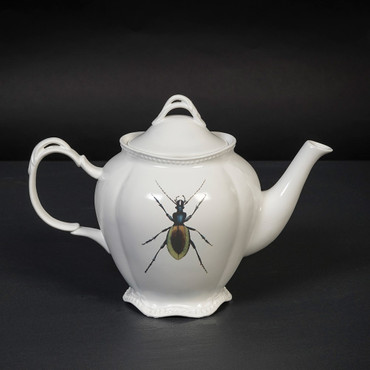 MAGPIE - CURIOS - TEAPOT - INSECTS