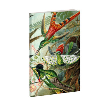 MAGPIE - HAECKEL - NOTEBOOK - HUMMINGBIRD