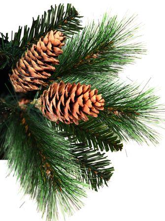 """Weihnachtsbaum """"Toronto"""" – Bild 2"""
