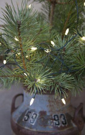 LED-Mini-Lichterkette mit Trafo, 80teilig – Bild 5