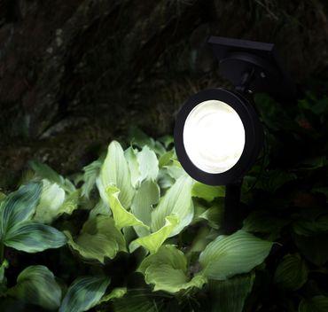 LED-Solar-Spotlight, ca. 22 x15 cm, Farbe: schwarz – Bild 5