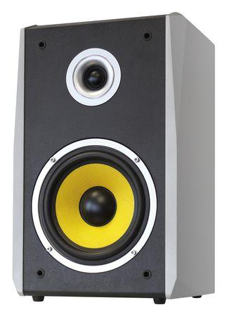 Dynavox TG-1000B-E Hifi Box Silber Paar – Bild 1