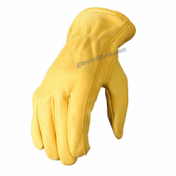 Deerskin Leather Gloves ohne Futter – Bild 2