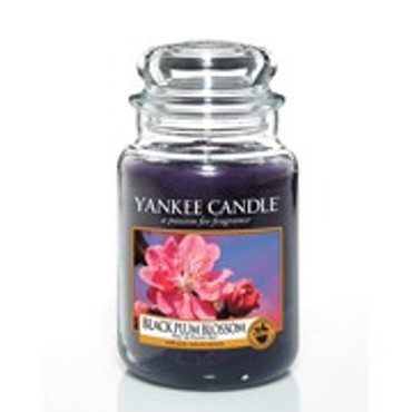Black Plum Blossom - 623 g - Yankee Candle