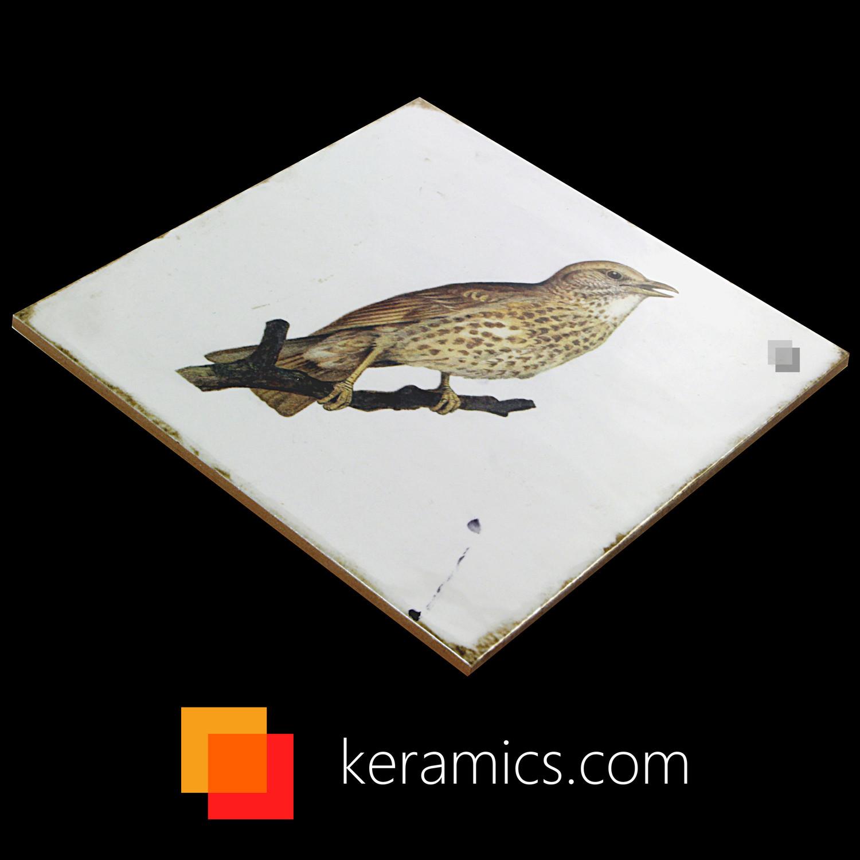 Dekorfliese Vögel Nostalgische Fliesen Forli birds decor set 20 x 20 cm– Bild 9