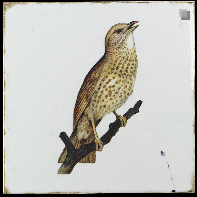 Dekorfliese Vögel Nostalgische Fliesen Forli birds decor set 20 x 20 cm– Bild 2
