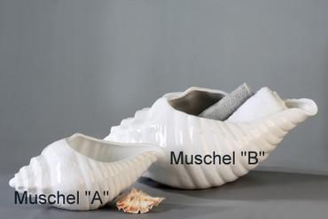MUSCHEL Schale DekoArt – Bild 2
