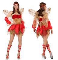 Kostüm Elfe Herbstfee Bild 2