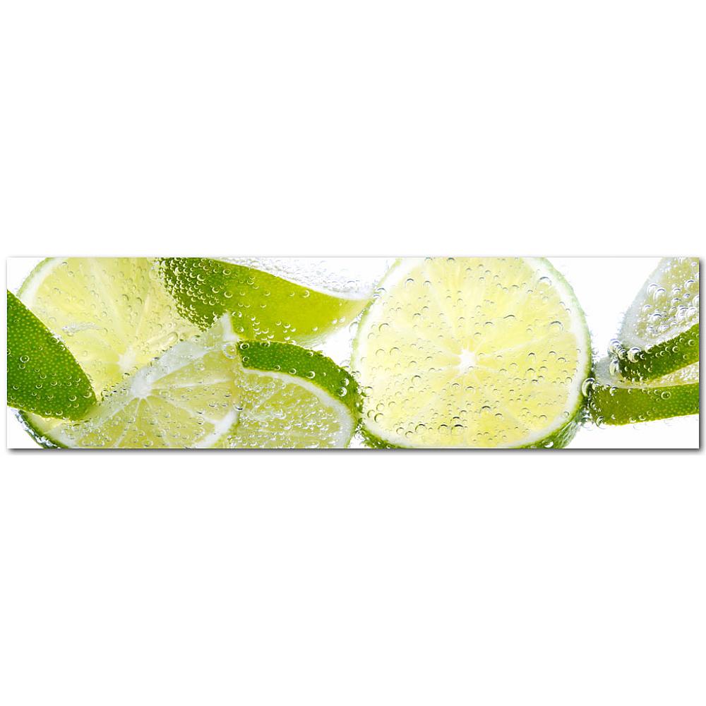 Kuechenrueckwand lemon for Acrylglas kuchenruckwand gunstig