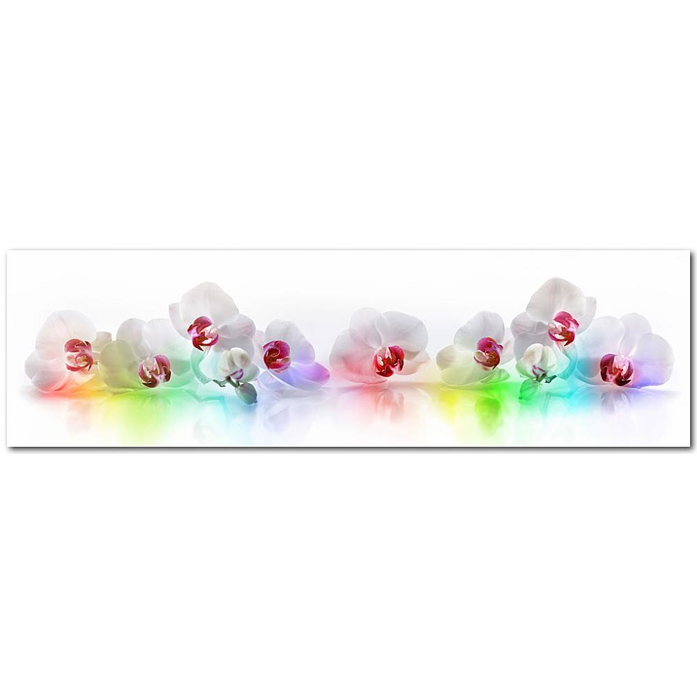 Kuchenruckwand Orchideen Bunt Premium Hart Pvc 0 4 Mm Selbstklebend