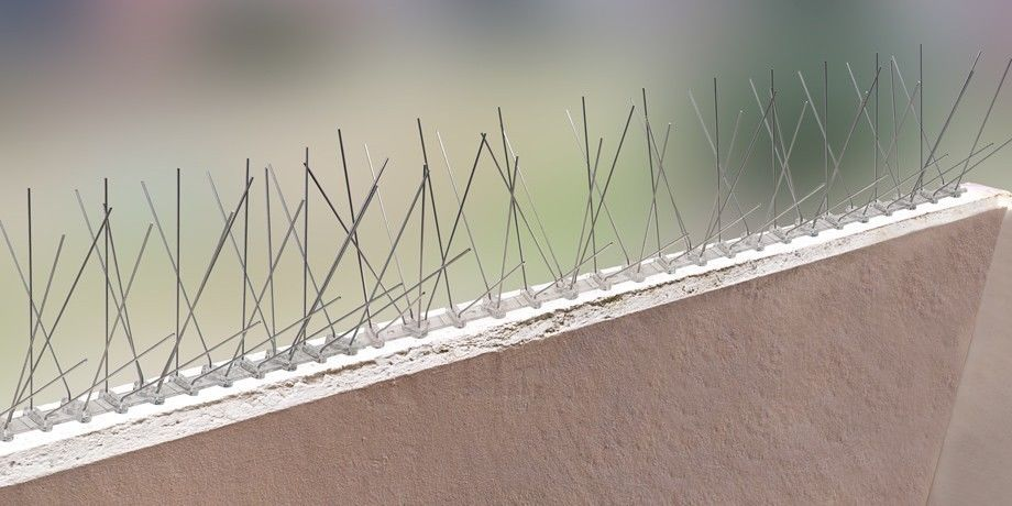 3.3 feet (1 Meter) 4 row pigeon spikes on stainless steel base - high quality solution for bird control spikes – Bild 5