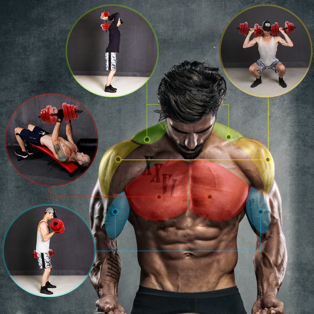 Noir ou Rouge. CCLIFE Kit dHalt/ères Musculation 2 en 1 Choix de Couleurs Halt/ères en Caoutchouc avec ou sans Barre de Connexion pour Entra/înement Musculaire et Halt/érophilie