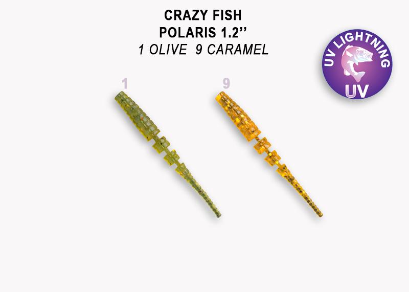 Crazy Fish Polaris 3 cm, 2 Farben a 8 Stück (gesamt 16 Stück) p.P.  – Bild 2