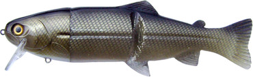 "Castaic Real Bait 12"" Floating (30,5 cm) – Bild 5"