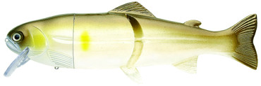 "Castaic Real Bait 12"" Slow Sinking (30,5 cm)"