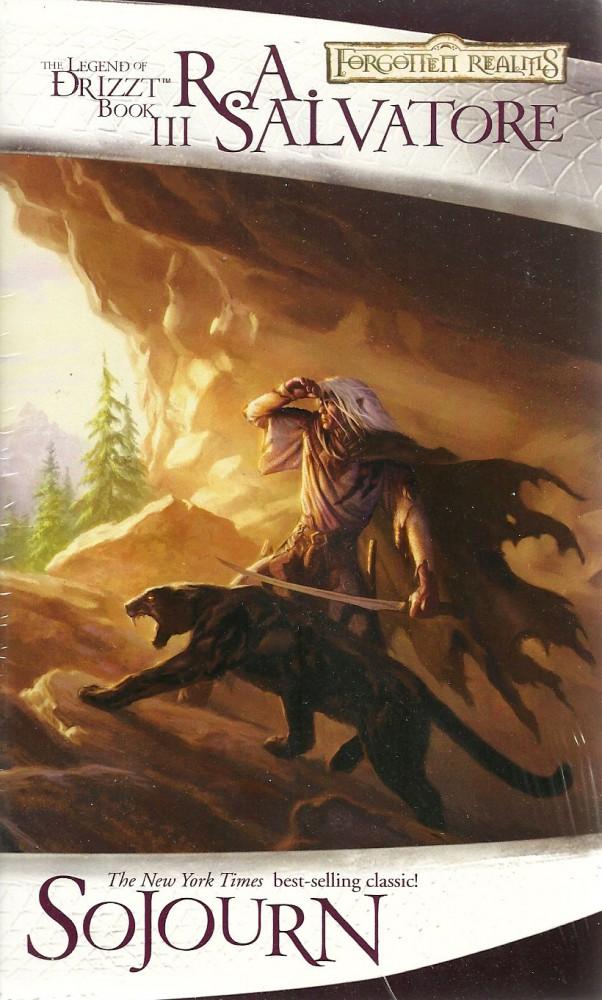 D&D Forgotten Realms: Sojourn (3)