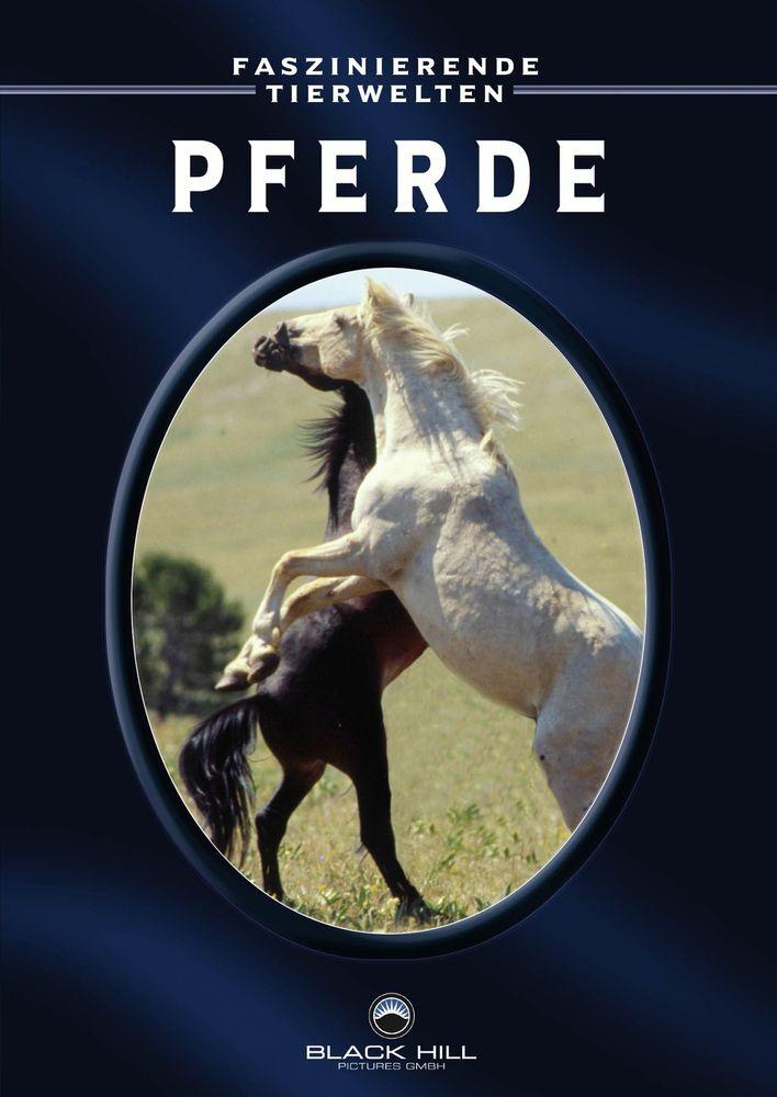 Faszinierende Tierwelten: Pferde