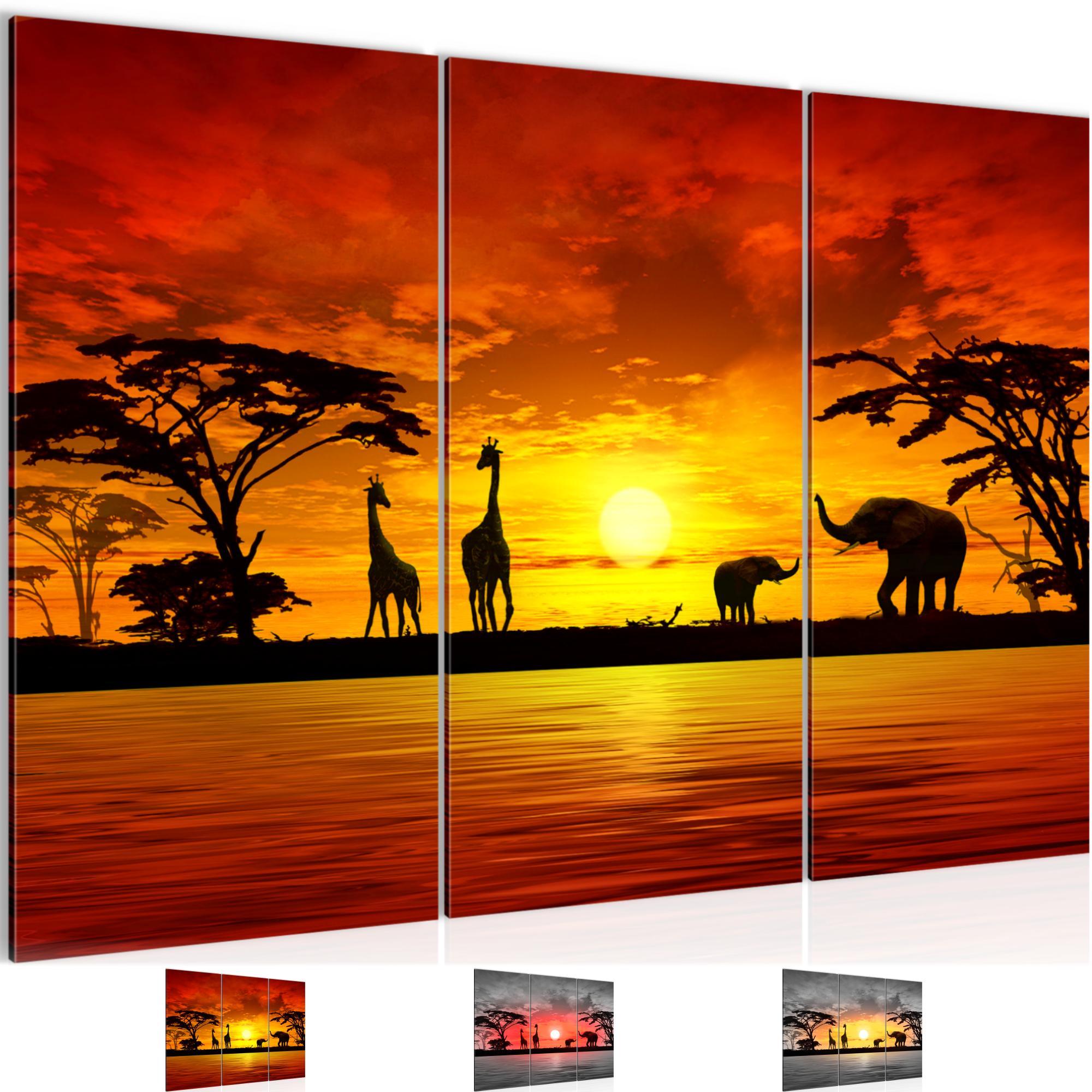 Afrika sonnenuntergang bild kunstdruck auf vlies leinwand xxl dekoration 000231p - Dekoration afrika ...