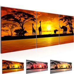 Afrika Sonnenuntergang BILD KUNSTDRUCK  - AUF VLIES LEINWAND - XXL DEKORATION  000234P  Bild 1