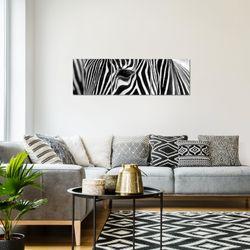 Afrika Zebra BILD KUNSTDRUCK  - AUF VLIES LEINWAND - XXL DEKORATION  001434P  Bild 7