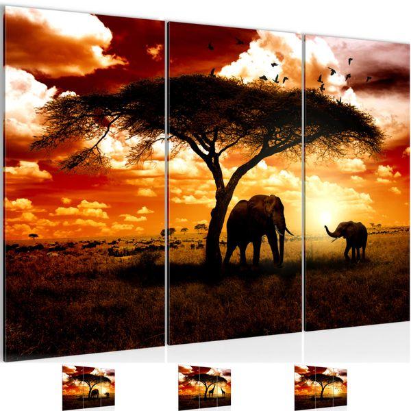 Afrika Sonnenuntergang BILD KUNSTDRUCK  - AUF VLIES LEINWAND - XXL DEKORATION  001531P