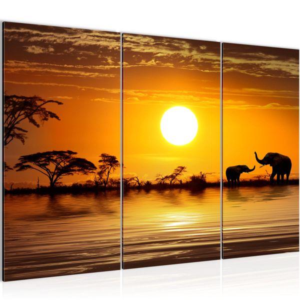 Afrika Elefant BILD KUNSTDRUCK  - AUF VLIES LEINWAND - XXL DEKORATION  000531P