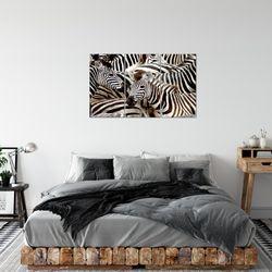 Afrika Zebra BILD KUNSTDRUCK  - AUF VLIES LEINWAND - XXL DEKORATION  000831P  Bild 3