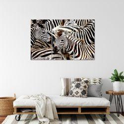 Afrika Zebra BILD KUNSTDRUCK  - AUF VLIES LEINWAND - XXL DEKORATION  000831P  Bild 4