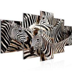 Afrika Zebra BILD KUNSTDRUCK  - AUF VLIES LEINWAND - XXL DEKORATION  00085P  Bild 2