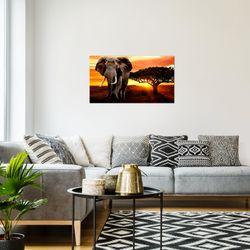 Afrika Elefant BILD KUNSTDRUCK  - AUF VLIES LEINWAND - XXL DEKORATION  00121P  Bild 7