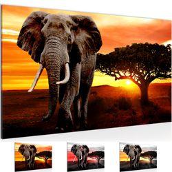 Afrika Elefant BILD KUNSTDRUCK  - AUF VLIES LEINWAND - XXL DEKORATION  00121P  Bild 2