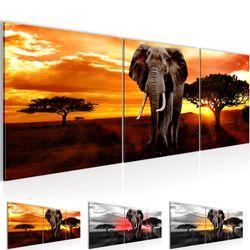 Afrika Elefant BILD KUNSTDRUCK  - AUF VLIES LEINWAND - XXL DEKORATION  001234P  Bild 1