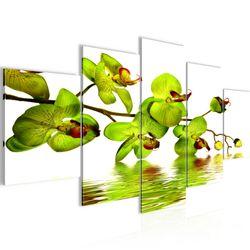 Blumen Orchidee BILD KUNSTDRUCK  - AUF VLIES LEINWAND - XXL DEKORATION  20015P  Bild 1