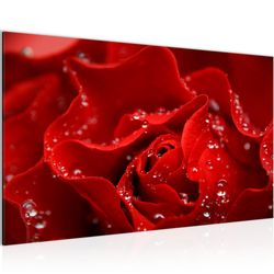 Blumen Rose BILD KUNSTDRUCK  - AUF VLIES LEINWAND - XXL DEKORATION  200414P  Bild 2