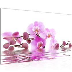 Blumen Orchidee BILD KUNSTDRUCK  - AUF VLIES LEINWAND - XXL DEKORATION  200614P  Bild 2