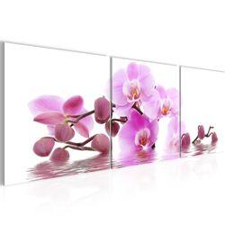 Blumen Orchidee BILD KUNSTDRUCK  - AUF VLIES LEINWAND - XXL DEKORATION  200634P  Bild 2