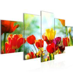Blumen Tulpen BILD KUNSTDRUCK  - AUF VLIES LEINWAND - XXL DEKORATION  20195P  Bild 1