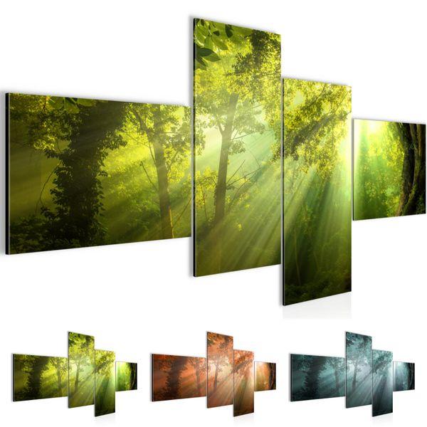 Wald Landschaft BILD KUNSTDRUCK  - AUF VLIES LEINWAND - XXL DEKORATION  60714P