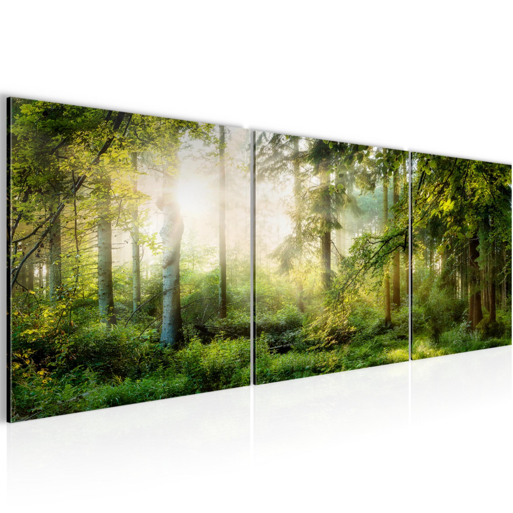 Bild Bilder Wandbild XXL Kunstdruck Leinwand aus Vlies Wald Landschaft Deko