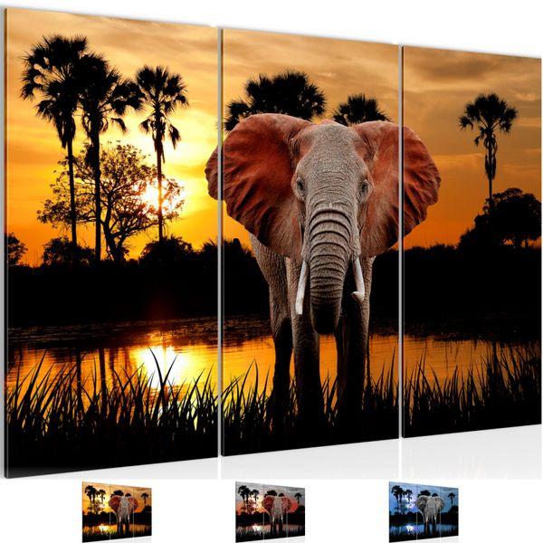 Afrika Elefant BILD KUNSTDRUCK  - AUF VLIES LEINWAND - XXL DEKORATION  001931P