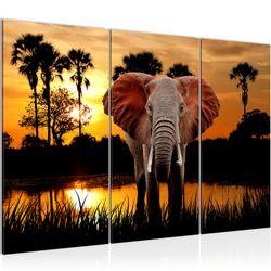 Afrika Elefant BILD KUNSTDRUCK  - AUF VLIES LEINWAND - XXL DEKORATION  001931P  Bild 2