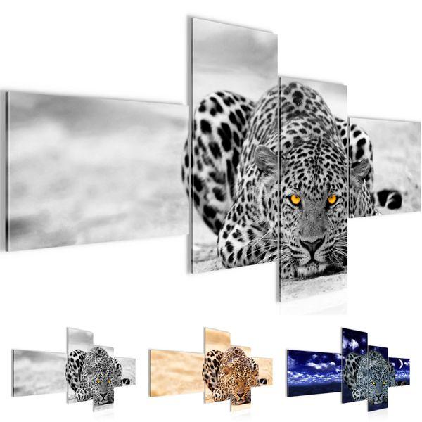Afrika Leopard BILD KUNSTDRUCK  - AUF VLIES LEINWAND - XXL DEKORATION  00034P