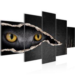 Katzen Auge BILD KUNSTDRUCK  - AUF VLIES LEINWAND - XXL DEKORATION  00265P  Bild 1