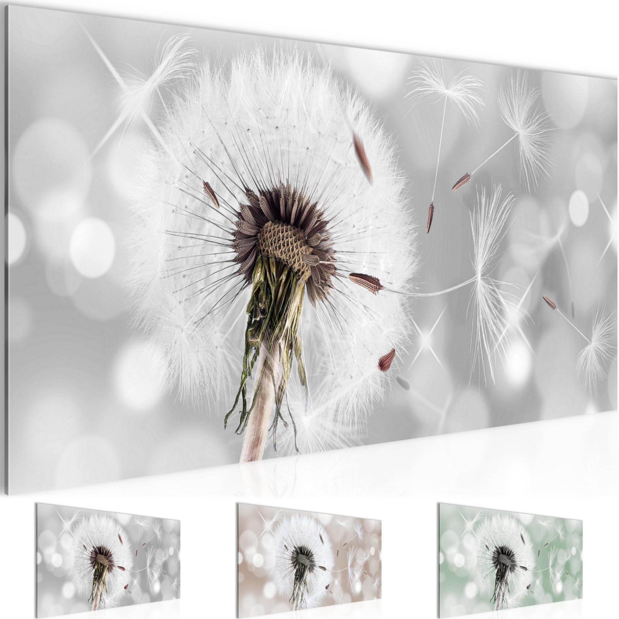 blumen pusteblume bild kunstdruck auf vlies leinwand xxl dekoration 211212p. Black Bedroom Furniture Sets. Home Design Ideas