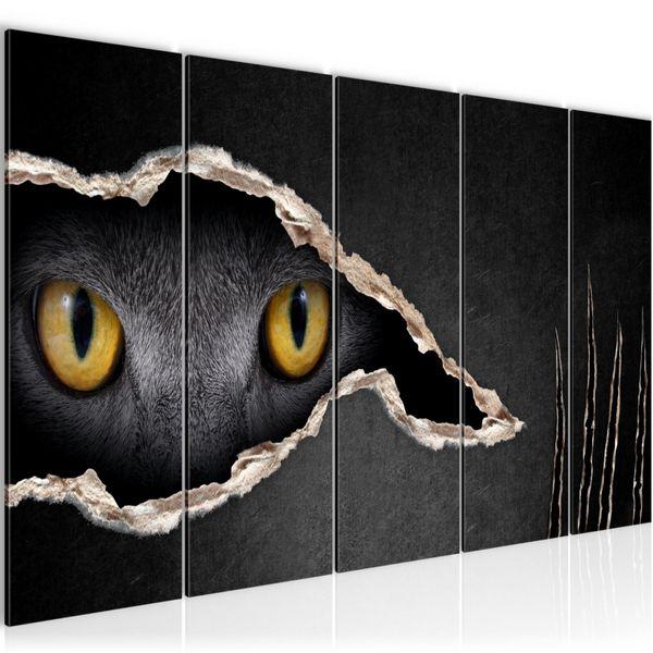 Katzen Auge BILD KUNSTDRUCK  - AUF VLIES LEINWAND - XXL DEKORATION  002655P