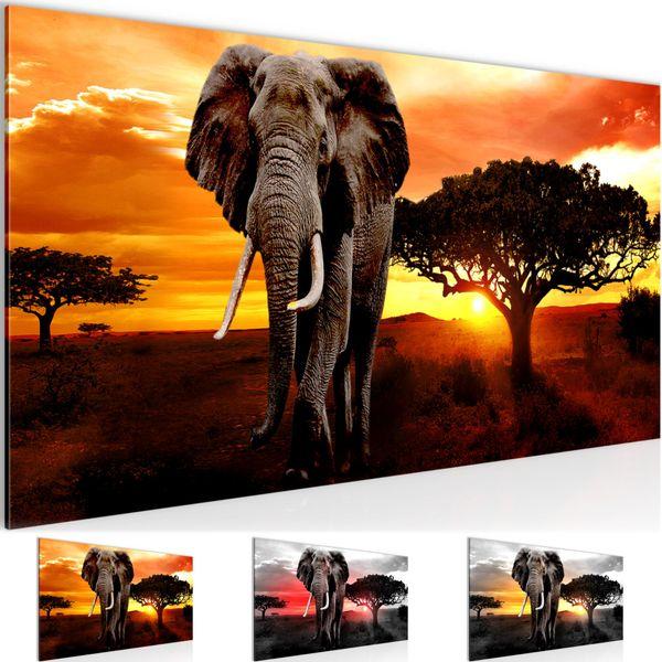 Afrika Elefant BILD KUNSTDRUCK  - AUF VLIES LEINWAND - XXL DEKORATION  001212P