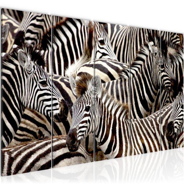 Afrika Zebra BILD KUNSTDRUCK  - AUF VLIES LEINWAND - XXL DEKORATION  000855P