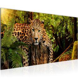 Afrika Leopard BILD KUNSTDRUCK  - AUF VLIES LEINWAND - XXL DEKORATION  003512P  Bild 2