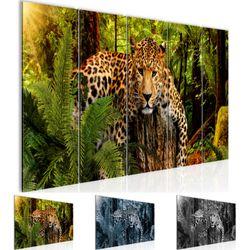 Afrika Leopard BILD KUNSTDRUCK  - AUF VLIES LEINWAND - XXL DEKORATION  003555P  Bild 1