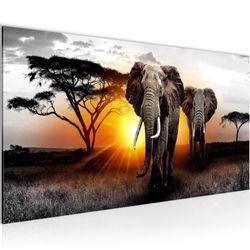 Afrika Elefant BILD KUNSTDRUCK  - AUF VLIES LEINWAND - XXL DEKORATION  007612P  Bild 1